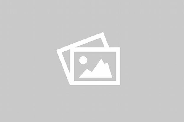 Adega Camolas Clo Tinto Península of Setúbal Portugal 2020